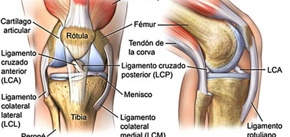 FR Salud: Periostitis Tibial - Full Runners